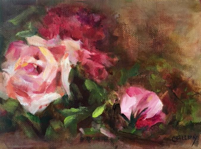 coronado roses